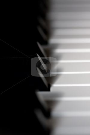 Piano keyboard stock photo, Piano keyboard by Luca Bertolli
