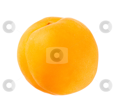 Apricot stock photo, Apricot isolated on a white background by Danny Smythe