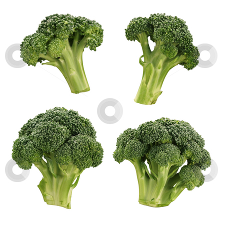 Broccoli stock photo, Broccoli isolated on a white background by Danny Smythe