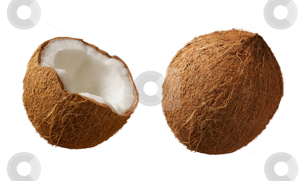 Coconuts stock photo, Coconuts isolated on a white background by Danny Smythe