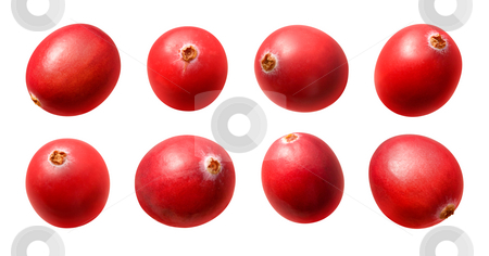 Cranberries stock photo, Cranberries isolated on a white background by Danny Smythe
