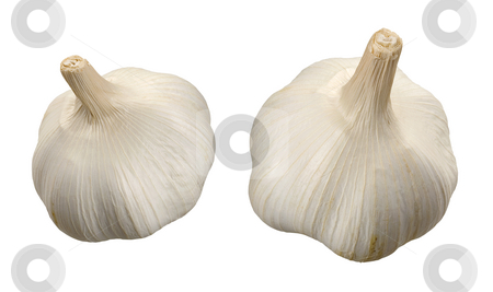 Garlic stock photo, Garlic  isolated on a white background by Danny Smythe