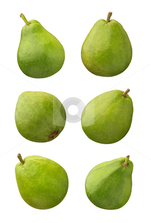 Guava stock photo, Guava isolated on a white background by Danny Smythe