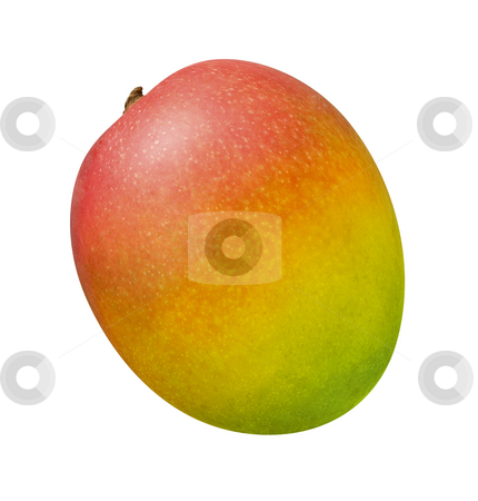 Mango stock photo, Mango isolated on a white background by Danny Smythe