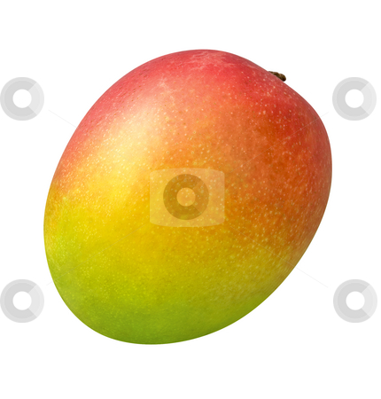 Mango stock photo, Mango isolated on a white background by Danny Smythe