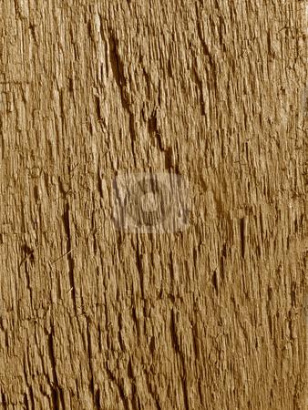 Rough wood texture macro close up. stock photo, Rough wood texture macro close up. by Stephen Rees