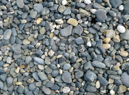 Penzance beach stones close up. stock photo, Penzance beach stones close up. by Stephen Rees