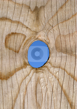 A peep hole in a wooden fence. stock photo, A peep hole in a wooden fence. by Stephen Rees