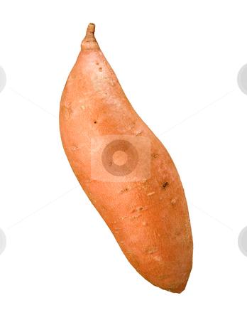 Sweet Potato stock photo, Sweet Potato isolated on a white background by Danny Smythe