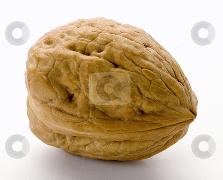Walnut stock photo, Walnut isolated on a white background by Danny Smythe