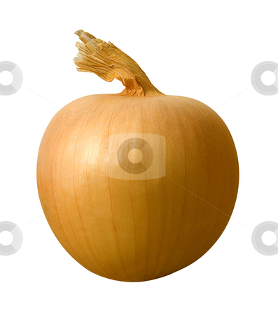 Yellow Onion stock photo, Yellow Onion isolated on a white background by Danny Smythe