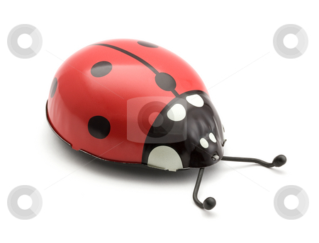 Toy Ladybug stock photo, Toy Ladybug isolated on a white background by Danny Smythe