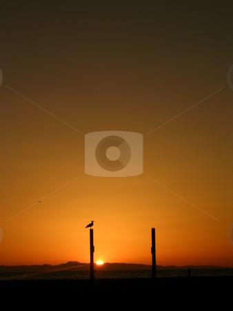 Sunset Behind Catalina Island stock photo,  by Jo Herman