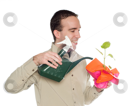 Green Thumb stock photo, A man with a green thumb is watering his plant, isolated against a white background by Richard Nelson