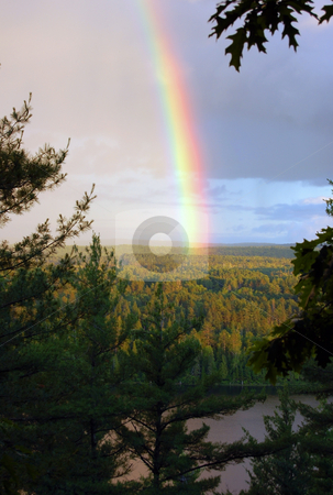 Rainbow stock photo, Rainbow above pine forest and lake by Pavel Cheiko