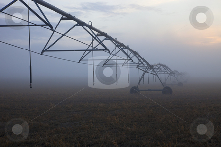 Center-Pivot Irrigation stock photo, A Center-Pivot Irrigation lines vanishes in the fog as the sun sets over and Eastern Washington field by Mike Dawson