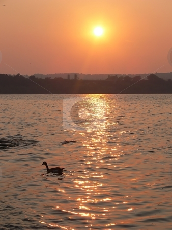 Sunset on the lake   stock photo, An beautiful sunset over the lake Ontario with the city on the horizon. by Horst Petzold