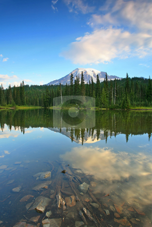 Rainier Reflections stock photo, Mt. Rainier reflecting in the still waters of Reflection Lake by Mike Dawson