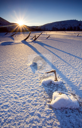 The Long Shadows of Winter stock photo, Long Shadows on the frozen surface of Mud Lake at dawn on a bitterally cold winter morning. by Mike Dawson