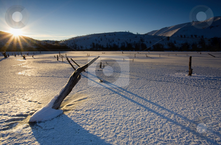 Frozen Shadows stock photo, Long shadows cast by the rising sun on a bitterly cold frozen  Mud Lake by Mike Dawson
