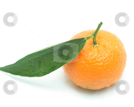 Tangerine with one leaf stock photo, Tangerine with one leaf isolated on white with a slight shadow underneath by Natalia Macheda