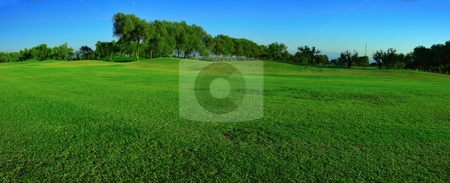 Green field panorama stock photo, Fragment of golf course, panoramic view by Natalia Macheda