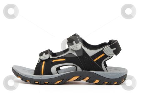 Sandal stock photo, Sandal by Andrey Butenko