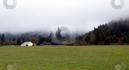 White barn and grassy field in rural misty countryside stock photo, Mist descends on a rural country setting by Jill Reid