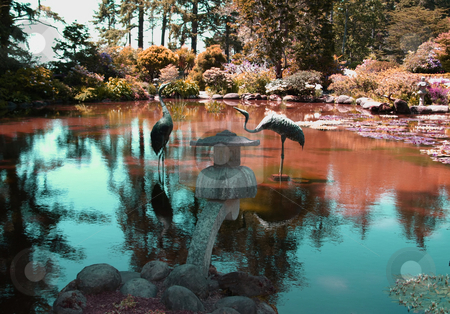 Statue and Pond with Water Lilies stock photo, Reflection pond with water lilies and statues in Oregon by Jill Reid