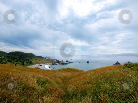 Grassy hillside overlooking ocean stock photo, Rolling grassy hillside overlooking ocean and beach on a cloudy day by Jill Reid
