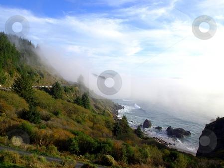Coastal fog on the hillside stock photo, Coastal fog rolls in over the beach and hillside in Brookings, Oregon by Jill Reid