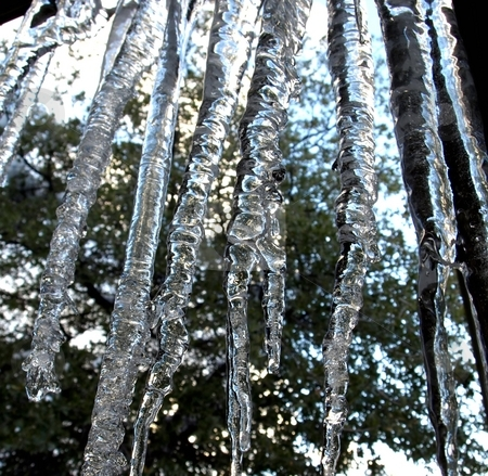 Crystal hanging icicles stock photo, View of long, crystal hanging icicles by Jill Reid