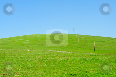 Powerlines And Rolling Hills stock photo, Power and telephone wires leading to the top of a grassy hilltop in the countryside with a single Cow at the top of the hill. by Lynn Bendickson