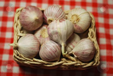 Garlic stock photo,  by Sarka