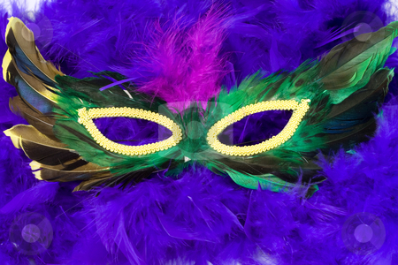 Masquerade Mask stock photo, Closeup view of a masquerade mask shot on a blue feathered boa by Richard Nelson