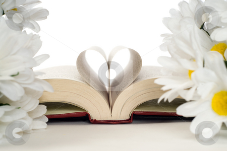 Romantic Book stock photo, A romance novel with artificial daisies and a heart made with the pages by Richard Nelson