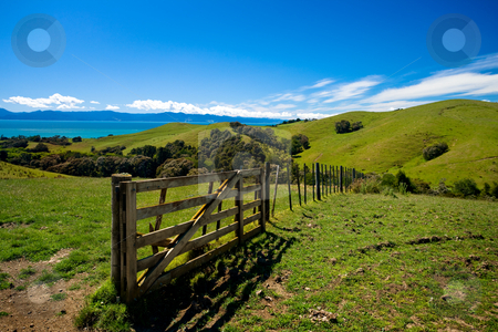 Green acres stock photo, Green fields and rolling hills in New Zealand by Angus Benham