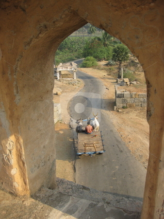 Rural Life - India stock photo, An ox-drawn cart in India by Colin Elves