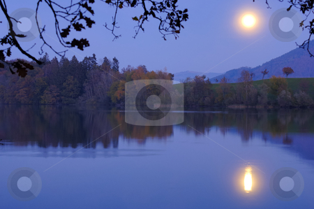 Moonrise over the lake stock photo, A bright full moon rising over a calm lake, framed by the branches of an oak tree in the foreground.. Space for text on the water of the lake. by Alistair Scott