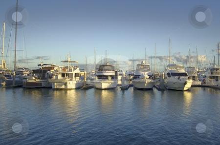 Golden Marina stock photo, Golden light from sunrise breaks over the marina. by Brett Mulcahy