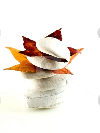 Beach stones with fall leaves stock photo, White off beach stones with red fall  leaves on white by Laurent Dambies