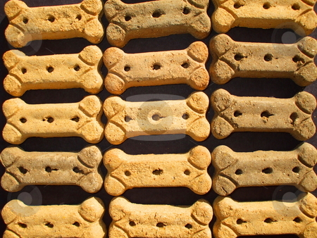 Dog Cookies stock photo,  by Michael Felix