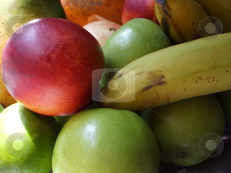 Group of Fruits stock photo,  by Michael Felix