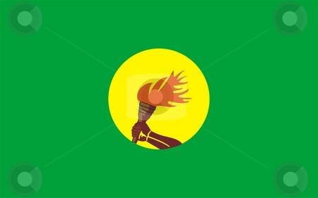 Flag Of Zaire-congo stock photo, 2D illustration of the flag of Zaire-congo by Tudor Antonel adrian