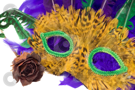 Mardi Gras Mask stock photo, A mardi gras mask with a dried red rose, isolated against a white background by Richard Nelson