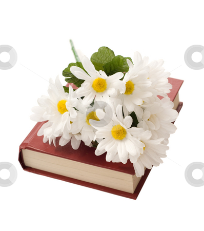Isolated Book With Daisies stock photo, A closed book with some artificial daisies on top, isolated against a white background by Richard Nelson
