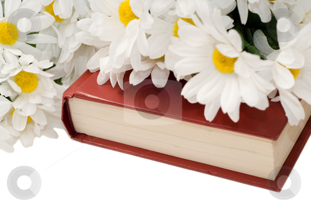 Romance Novel stock photo, Closeup view of a romance novel with some fake daisies sitting on top, isolated against a white background by Richard Nelson