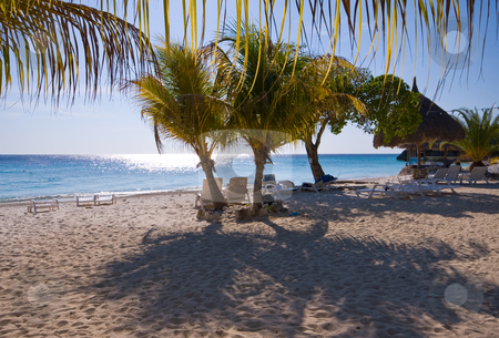 Nice beach scene with palm trees  stock photo, Nice quit tropical beach with palm trees by Karin Claus