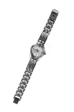Ladies stainless steel watch stock photo, Ladies stainless steel watch on white background by Christopher Meder