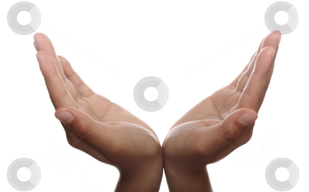 Two hands open in prayer  stock photo, Two hands open in prayer against white background by Christopher Meder